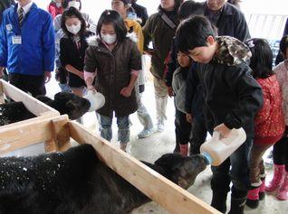 「春休み 親子で酪農体験と牛乳工場見学会」を京都工場池上製作所で開催しました