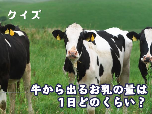 牛から出るお乳の量は1日どれくらい?